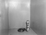 Snake in a box or cage, Stroop's Snake Farm, Bowmans Crossing, Va. by William Garber