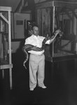 Inside of Stroop's Snake Farm, a man holding a large snake. Bowmans Crossing, Va. by William Garber