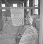 Small boy sitting on a tall bag of Purina mixture at the Mt. Jackson Mill. by William Garber