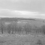 Distant view of a poultry farm.