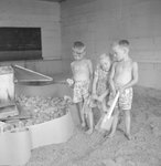 Two young boys and one young girl looking at a large group of baby chicks that are being confined to one area. by William Garber
