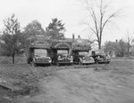 Four Robinson Produce Trucks, each of a different size, diagonal view by William Garber