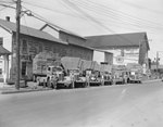 A row of company trucks for Triplett and Vehrencamp, a farming and hardware store. The drivers are standing next to their trucks by William Garber