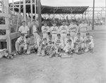 Team photo of the New Market (Rebels) baseball team