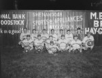 Team photo of the Quicksburg men's baseball team, with the fence of the baseball field advertising Woodstock businesses in the background