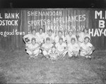 """Team photo of a men's baseball team that has the letter """"S"""" stitched into their uniforms. Taken against a fence of a baseball field that advertises Woodstock businesses by William Garber"""