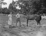 Broadway Horse Show, a man leading a horse with a woman standing nearby