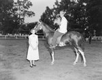 Broadway Horse Show, a man and a woman standing next to a horse