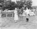 Broadway Horse Show, two women standing next to a horse with its head and neck extended forward