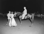 Broadway Horse Show, a man riding a horse, approaching a man and woman standing on the ground