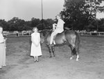 Broadway Horse Show, a man on a horse holding a ribbon, with a woman standing next to him