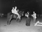 Broadway Horse Show, two men riding horses and approaching a woman holding a trophy and ribbon