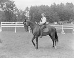 Side view of a young woman posing on horseback, a ribbon on her horse