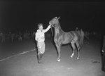 Timberville Horse Show, a man standing next to a horse