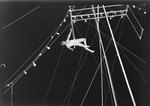 A male acrobat, possibly under the roof of a large tent or outdoors by William Gaber