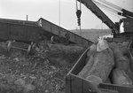 Close up view of the cars full of logs that had steered off track in the train wreck, which identifies the train car to belong to the Baltimore and Ohio Railroad company by William Garber