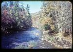Dry River seen from Swinging Bridge in Riven Rock Park