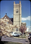 Presbyterian Church tower and blooming cherry trees on N. Court Sq. by James Madison University
