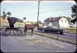 Horses and buggy at Nichols parking lot