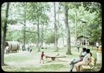 Hillandale Park play area by James Madison University