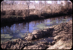 Black's Run at sewer plant by James Madison University