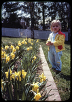 Laura and jonquils by James Madison University