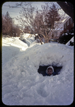 Laura in the front yard igloo